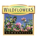 wildflowers-logo
